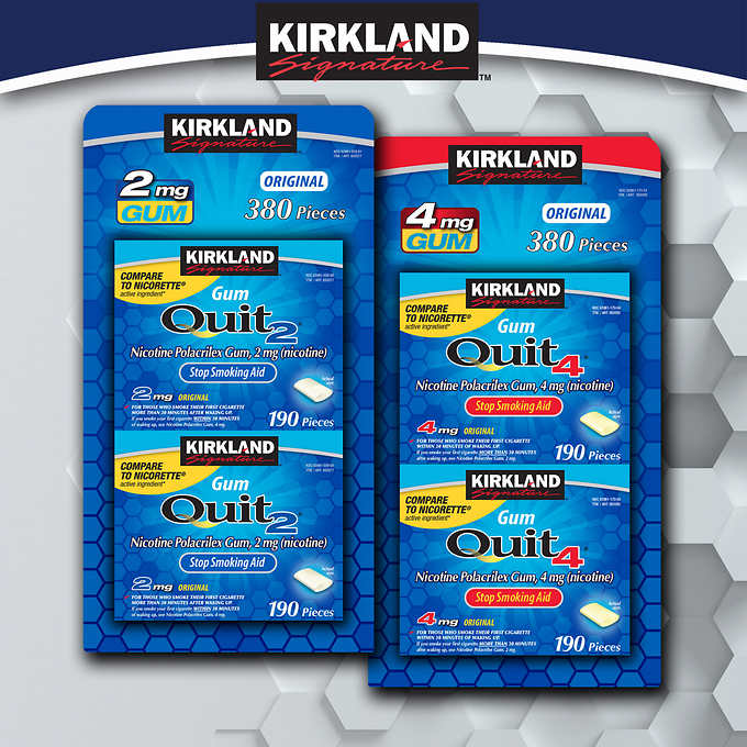 Kirkland Signature Quit Gum, 380 Pieces 柯克蘭尼古丁口香糖 (380片)