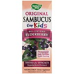 Nature's Way Sambucus For Kids 接骨木花果, 小朋友專用 (4oz)